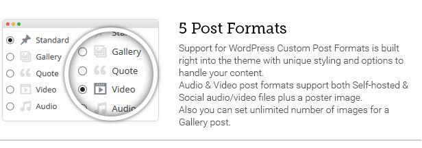 5 Post Formats